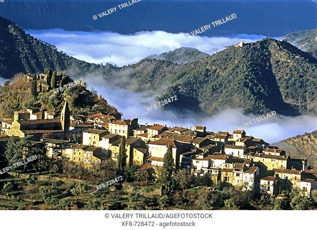 The little perched village of La Tour early in the morning and the foggy Tinee valley. Alpes Maritimes, France