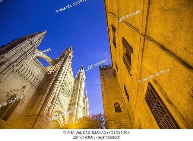 Almudaina palace and Cathedral in Palma de Majorca by night. Spain