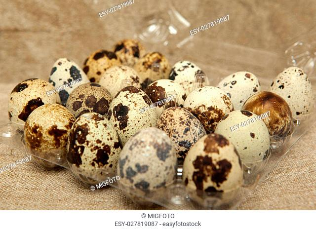 Quail eggs in packing on linen background