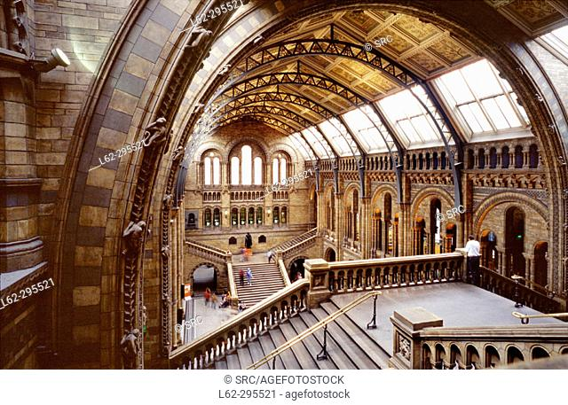 Natural History Museum. London. England