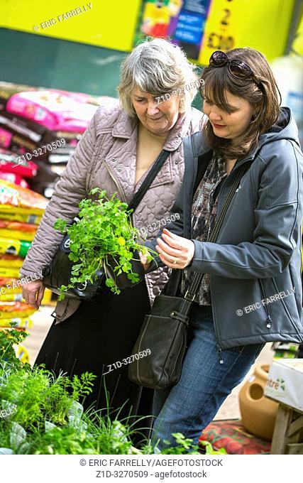 Women choosing strawberry plants from garden Centre UK