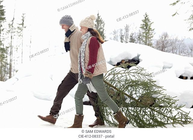 Happy couple dragging fresh Christmas tree in snow
