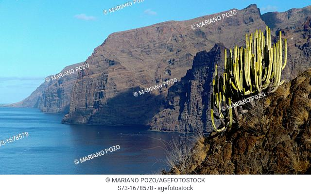 Cliff of Los Gigantes, Tenerife, Spain