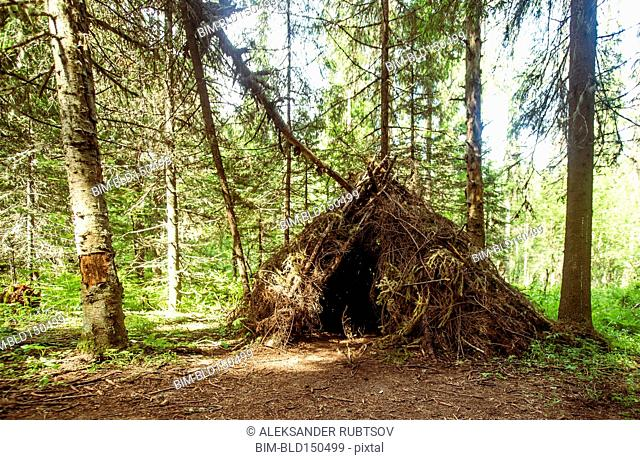 Thatched teepee fort in forest