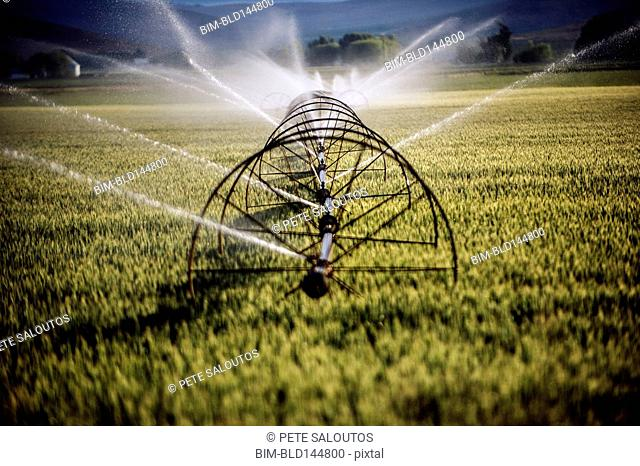 Irrigation system watering crops on farm field