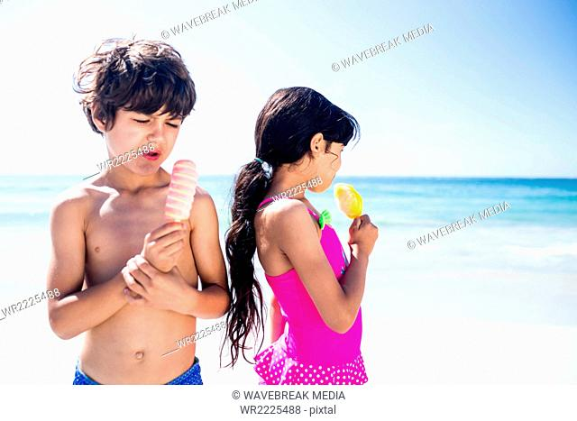Cute siblings eating ice creams