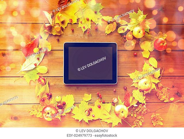season, advertisement and technology concept - close up of tablet pc with blank screen in frame of autumn leaves, fruits and berries on wooden table