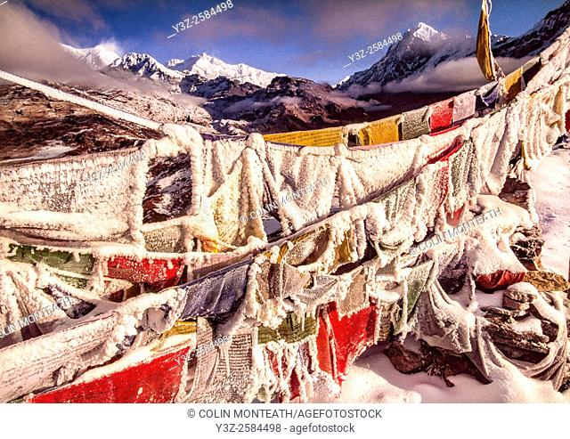 Iced up prayer flags, Dzong Ri, Kangchenjunga 8595 m in distance, Goetcha La trek, Sikkim, Himalaya, India