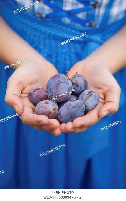 Germany, Luneburger Heide, gir's hands holding plums