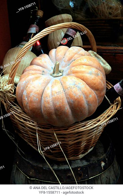 Still life with pumpkin Siena Italy