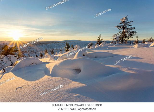 Winter landscape on mount Hirvas in February in direct light in afternoon sunlight in Gällivare, swedish lapland