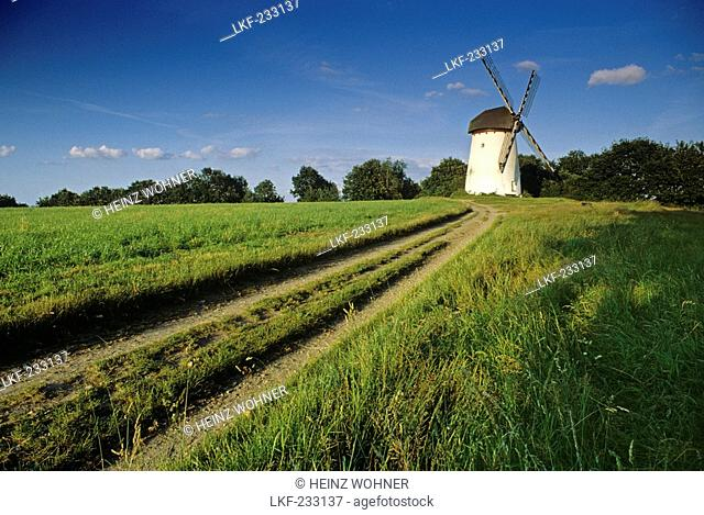 Engelsberg windmill, near Krefeld, Lower Rhine Region, North Rhine-Westphalia, Germany