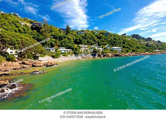 Coast panorama - Wellington, New Zealand