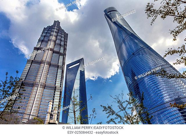 Three Skyscrapers Trees Reflections Liujiashui Financial District Shanghai China. Shanghai Tower, Shanghai World Financial Center and Jin Mao Tower