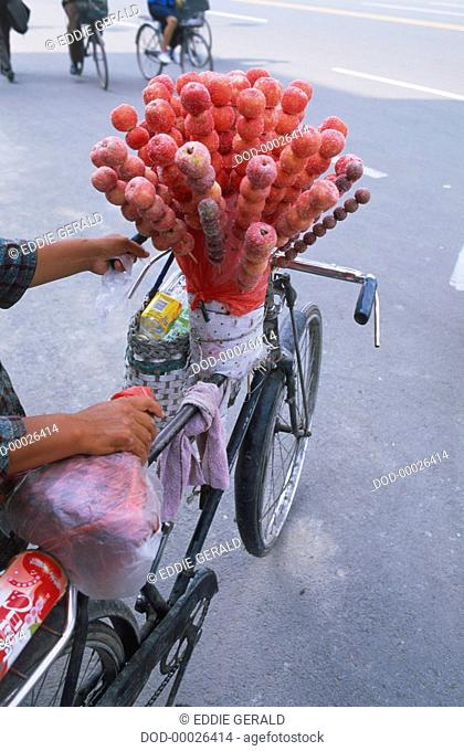 China, Inner Mongolia, Hohhot, vendor on a bicycle transporting candied apples