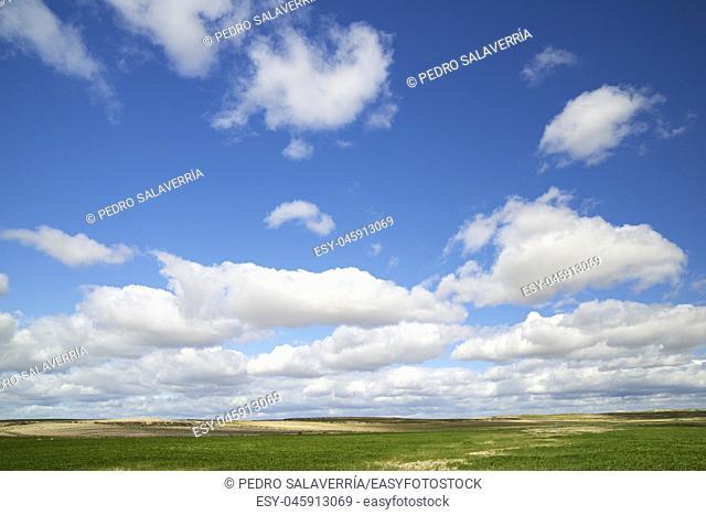 Landscape in Zaragoza Province, Aragon, Spain