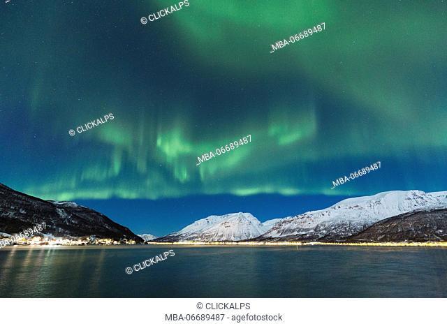 Northern lights over the fjord. Lokvoll, Manndalen, Kafjord, Lyngen Alps, Troms, Norway, Lapland, Europe