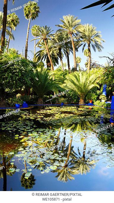 Vertical panorama of watergarden and palm trees at Majorelle Garden in Marrakech Morocco