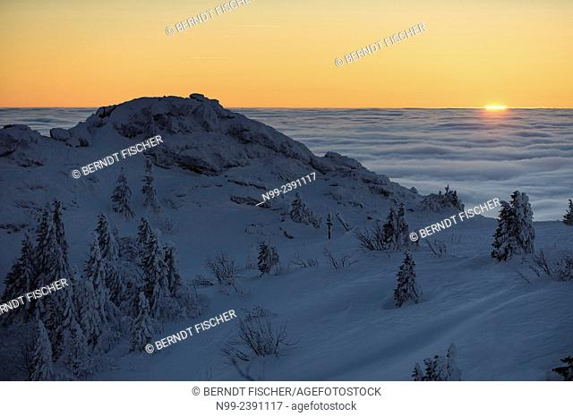 Summit of Great Arber, highest summit of the Bayerischer Wald, snow-packed spruces and rocks, sunset in the sea of fog, Bavaria, Germany