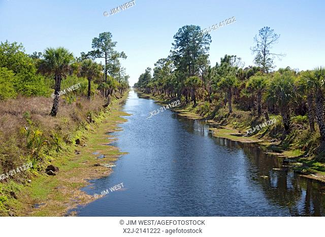Naples, Florida - A canal in the Picayune Strand State Forest near Everglades National Park, where the Army Corps of Engineers is in the midst of a wetlands...
