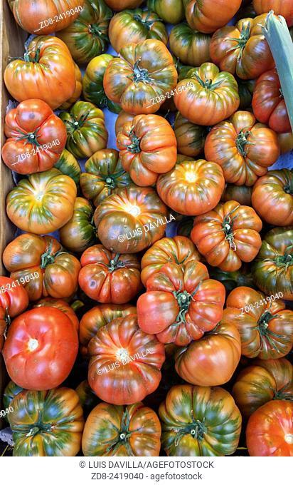 raf tomatoes. san miguel market. madrid