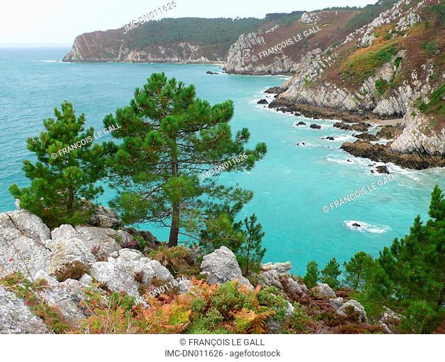 France, Brittany, Crozon, cap de la chevre