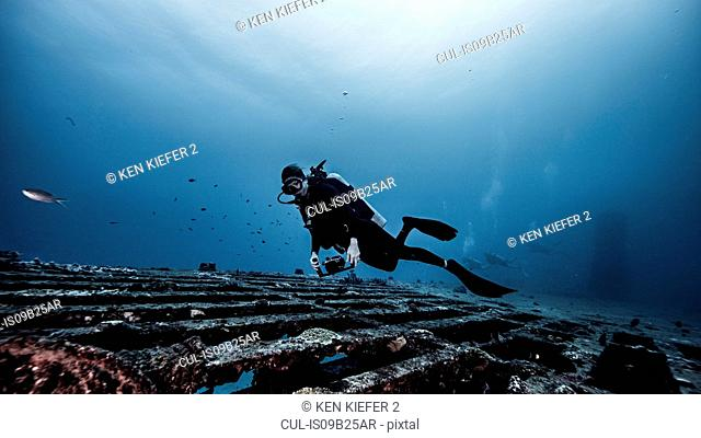 Underwater view of diver exploring shipwreck, Jupiter, Florida, USA