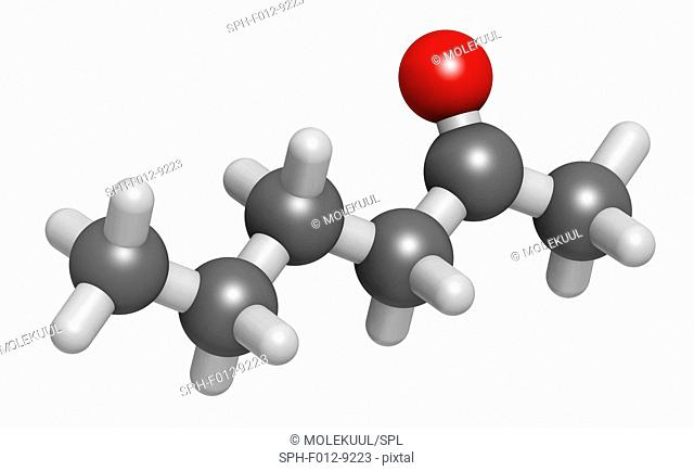 Methyl butyl ketone (MBK, 2-hexanone) solvent molecule. Atoms are represented as spheres and are colour coded: hydrogen (white), carbon (grey), oxygen (red)