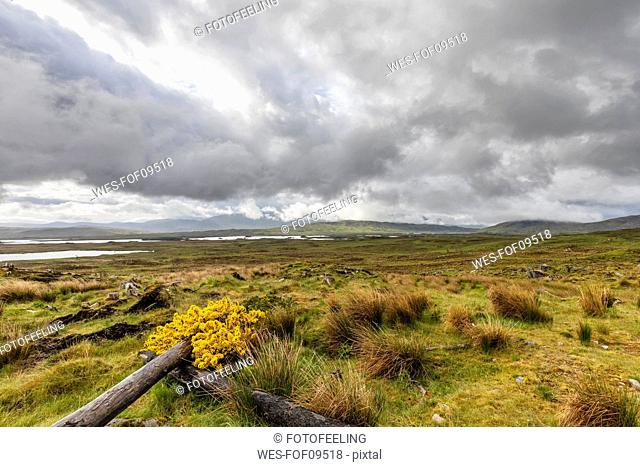 Great Britain, Scotland, Scottish Highlands, Glencoe, Rannoch Moor, Loch Beinn Chaorach and Loch Ba