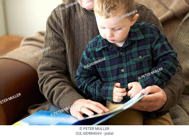 Boy sitting on grandfather's lap reading book