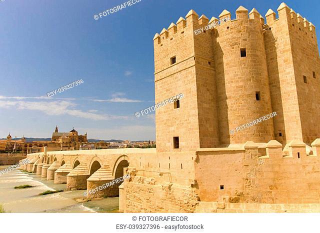 Roman bridge is over the Guadalquivir river in Cordoba. The Calahorra Tower (Torre de la Calahorra) is a fortified gate to protect the bridge