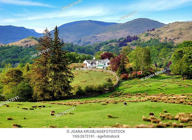 Little Langdale, Lake District, Cumbria, England, UK