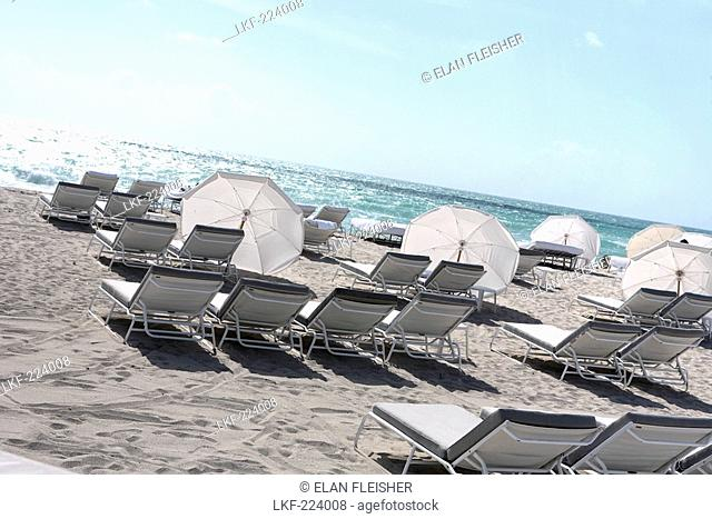 Sunloungers and sunshades at the beach in the sunlight, South Beach, Miami Beach, Florida, USA