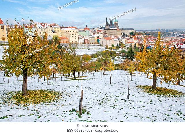 Czech Republic, Praha, Prague castle from Strahov garden