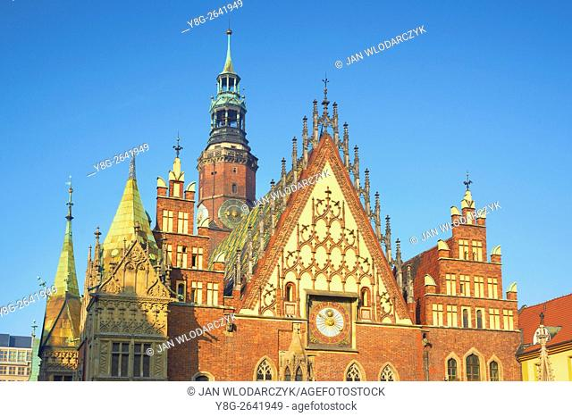 Wroclaw Gothic Town Hall, Old Town, Market Square, Lower Silesia, Wroclaw, Poland
