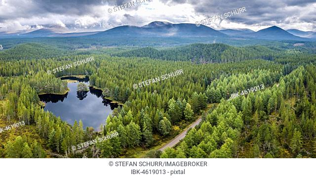 Overview of Loch Morlich, Glenmore Forest Park, Cairngorms National Park, Highlands, Scotland, Great Britain
