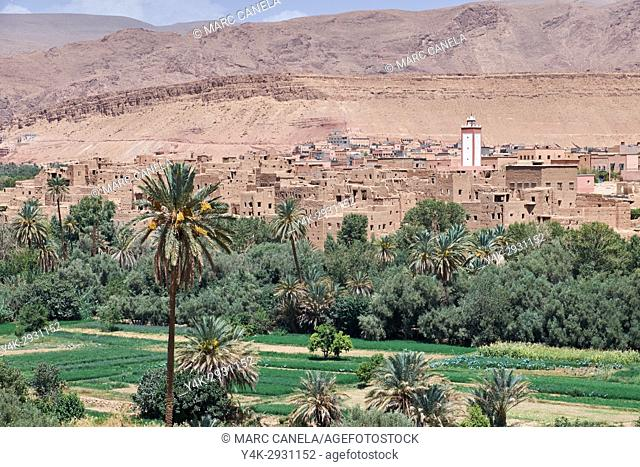 Africa, Morocco, todra valley