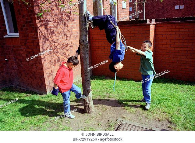 Group of young boys playing on rope swing in back garden