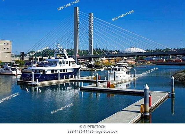 Yachts at a dock with a suspension bridge in the background, Foss Landing Marina, Tacoma, Pierce County, Washington State, USA