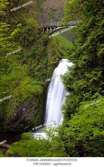 Multnomah Falls in the Cascade Mountains of Oregon, USA