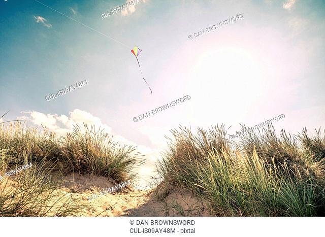 Kite flying in mid air above dunes on Norfolk coast, UK