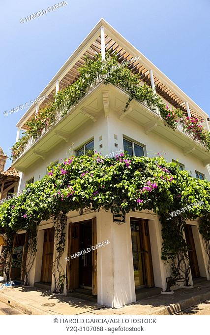 Picturesque houses with large doors, big windows and green foliage n the ancient walled city of Cartagena of indies. Historical patrimony of the humanity for...