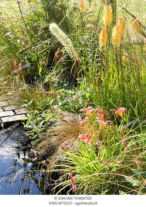KNIPHOFIA 'TOFFEE NOSED' AND HEMEROCALLIS ON THE LUST GARDEN DESIGNED BY RACHEL PARKER SODEN