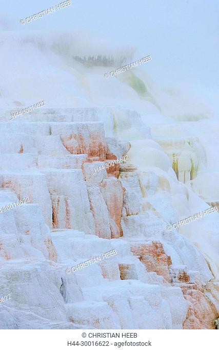 North America, USA, Rocky Mountains, Rockies, Montana, Yellowstone National Park, UNESCO, World Heritage, Mammoth Hot Springs