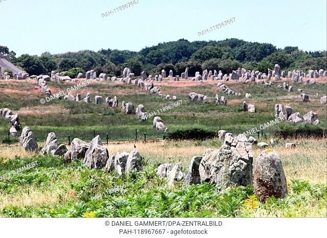 View of the rows of stones of Carnac. Location is at the visitor center Menec. | usage worldwide. - Carnac/Bretagne/Frankreich