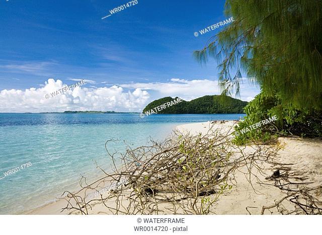 Tropical Beach, Pacific, Micronesia, Palau