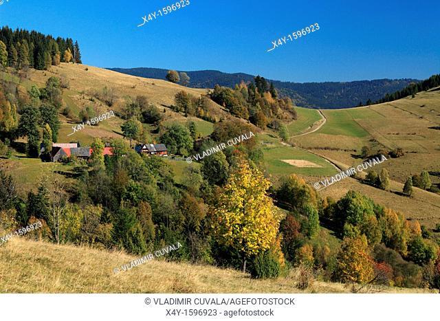 The autumnal colours of rural countryside at village Zazriva part Koncita in Orava region, Slovakia