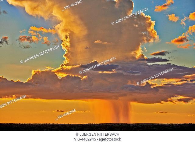 rain clouds over Kgalagadi Transfrontier Park, Kalahari, South Africa, Botswana, Africa - Kgalagadi Transfrontier Park, South Africa, Botswana, 01/03/2014