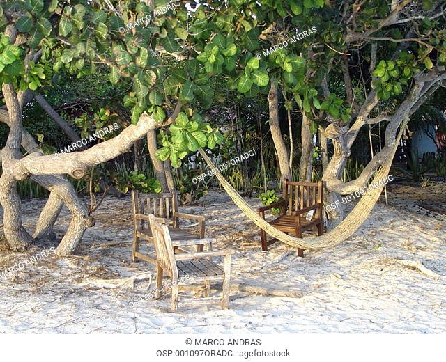 an empty hammock with chairs at jericoacoara beach sands