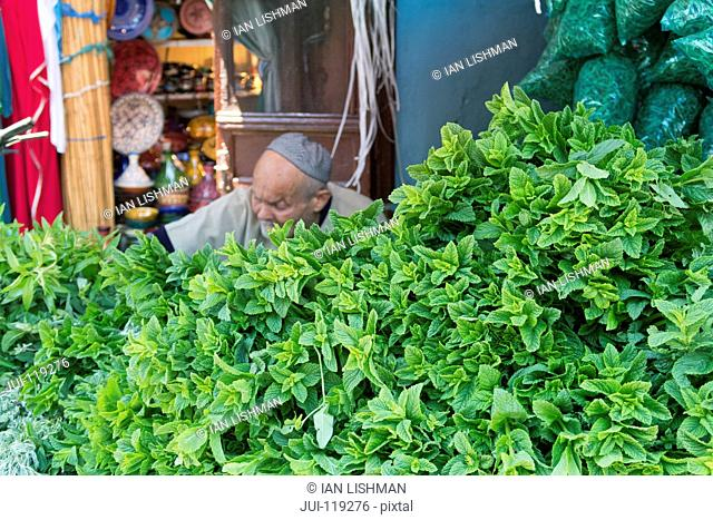 Fresh mint for sale in Souk, Marrakech, Morroco